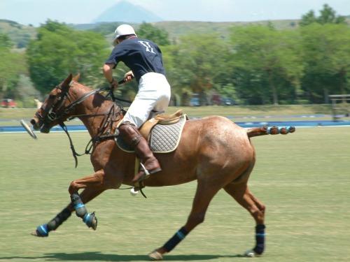 Campeonato Argentino Abierto de Polo de Palermo,